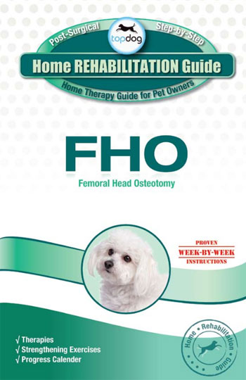 fho in dogs