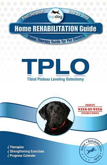 tplo surgery recovery