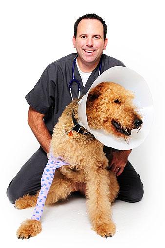 tta surgery recovery