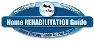 home rehab logo