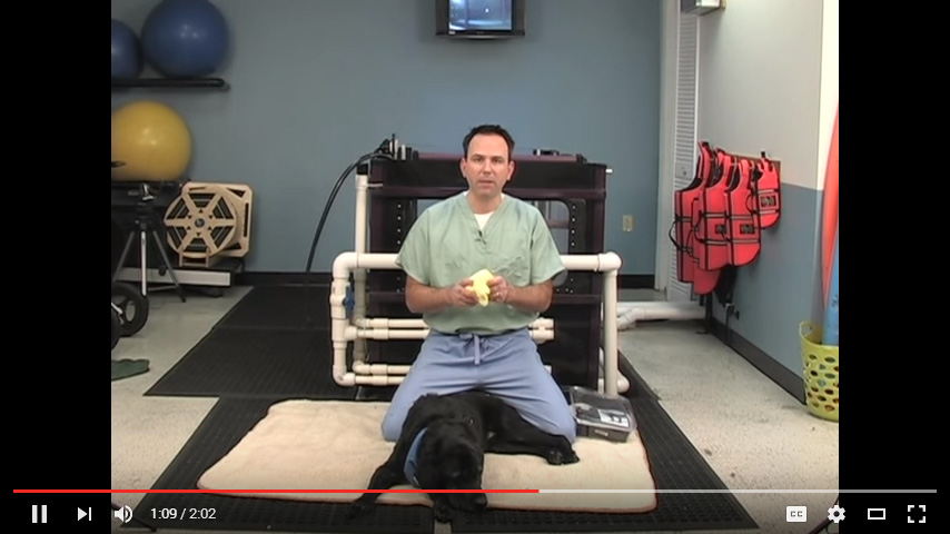 Video: Moist Heat Therapy