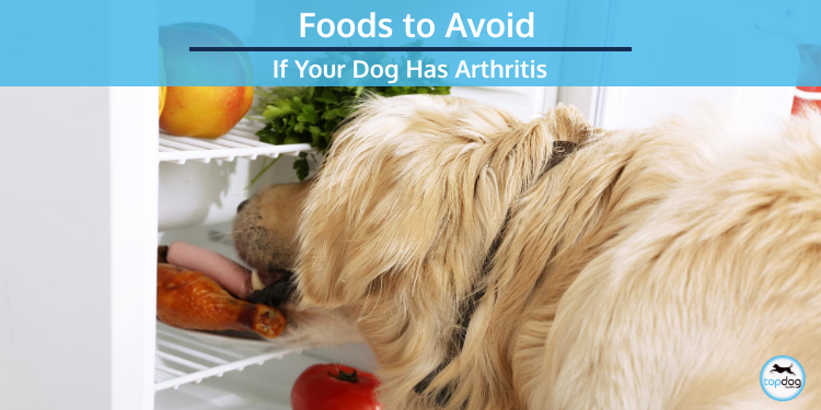 Foods to Avoid If Your Dog Has Arthritis