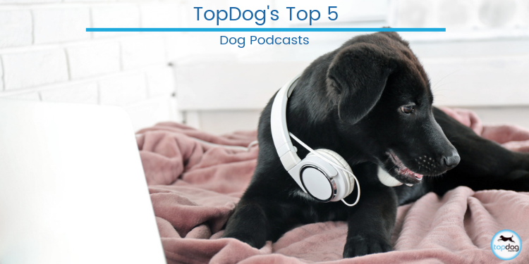 Top 5 Dog Podcasts